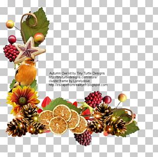 Christmas Ornament Superfood Christmas Day Fruit PNG