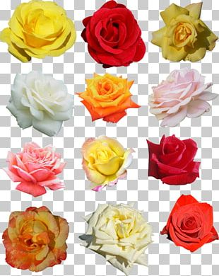 Rose Flower Wreath Crown Headband PNG