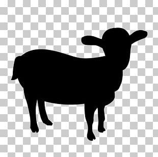 Boer Goat Feral Goat Cattle Mountain Goat PNG