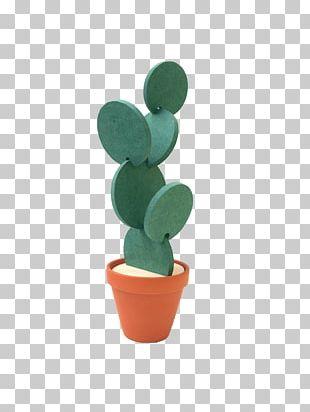 Drink Coaster Cactaceae Succulent Plant Shape PNG