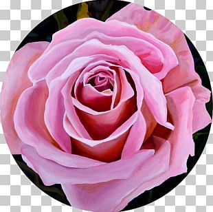 Garden Roses Graphic Arts Oil Painting PNG