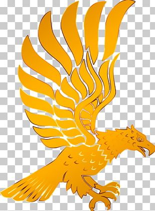 The Golden Eagle Bird PNG