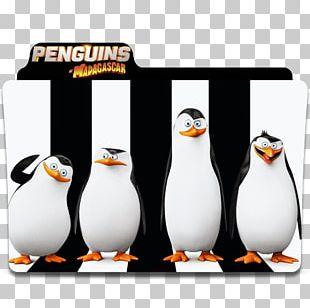 Kowalski Madagascar DreamWorks Animation Film Computer Icons PNG