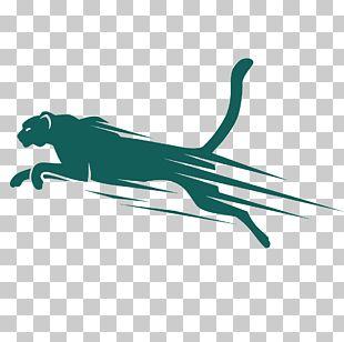 Cheetah Leopard Euclidean Illustration PNG