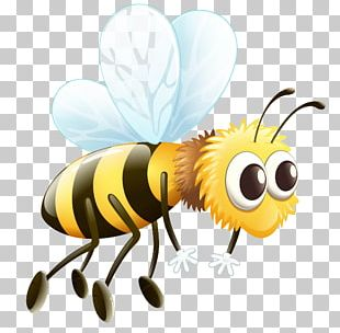 Worker Bee Drone PNG