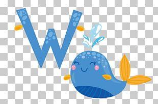 Whale Cartoon Adobe Illustrator Illustration PNG