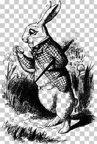 "Alice's Adventures In Wonderland White Rabbit Cheshire Cat The Nursery ""Alice"" PNG"