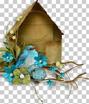 Green Blue Color Bird Flower PNG