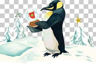 Starbucks Game 0 No Limit King Penguin PNG