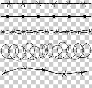 Barbed Wire Concertina Wire Illustration PNG
