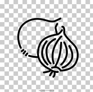 Onion Organic Food Vegetable Drawing Vegetarian Cuisine PNG