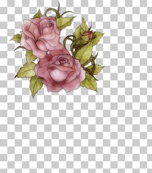 Garden Roses Flower Portable Network Graphics Floral Design PNG