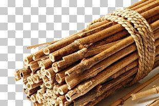 Bamboo Branch Shutterstock Euclidean PNG