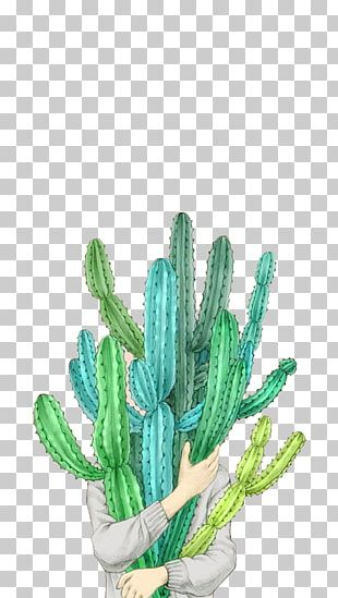 Taobao Tmall Cactaceae Illustration PNG