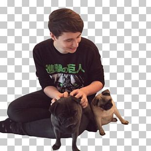 Doug The Pug Dan And Phil The Amazing Book Is Not On Fire YouTube PNG