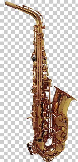 Baritone Saxophone Clarinet Family Tenor Saxophone