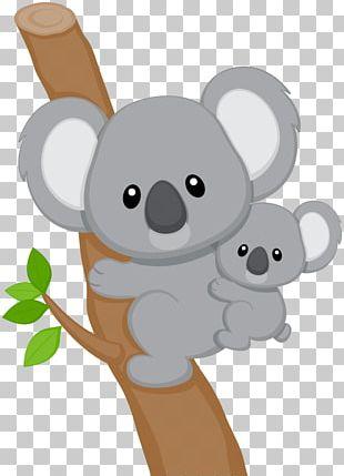 Baby Koala PNG