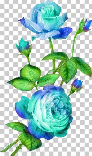 Cut Flowers Rose PNG