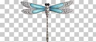 Butterfly Dragonfly Insect Wing Damselfly PNG