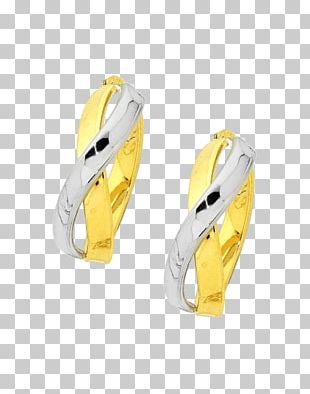 Silver Shoe PNG