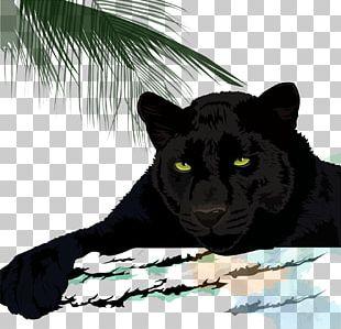 Black Panther Cougar Leopard Jaguar Cheetah PNG