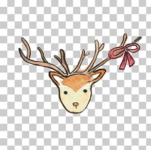 Reindeer Watercolor Painting PNG