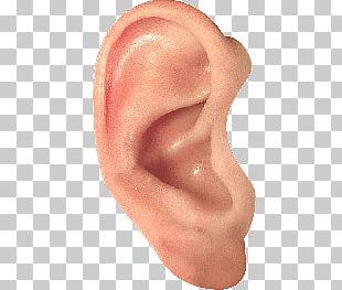 Ear PNG
