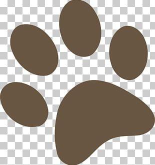 Dog Brown Bear Paw PNG