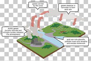 acid rain diagram air pollution png