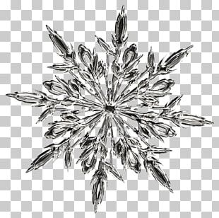 T-shirt Ice Crystals Snowflake PNG