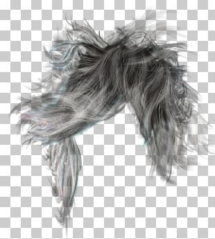 Hairstyle Long Hair Wig PNG
