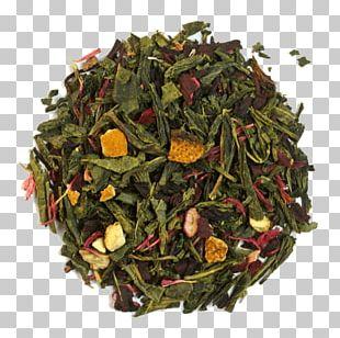 Sencha Nilgiri Tea Kukicha Green Tea PNG