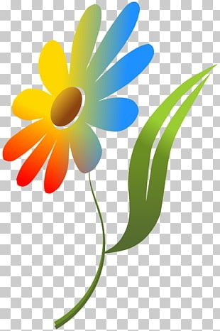 Color Flower Computer Icons PNG