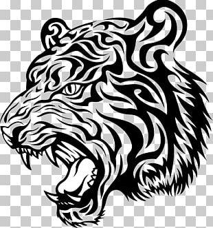 Tiger Head Drawing PNG