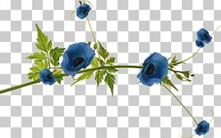 Blue Flower Portable Network Graphics Floral Design PNG