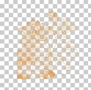Petal Floral Design Flower Pattern PNG