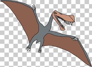 Velociraptor Jurassic Park Builder Tyrannosaurus Dinosaur Jurassic World Evolution PNG