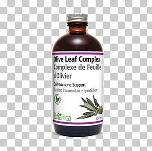 Olive Leaf Herb Extract Health PNG