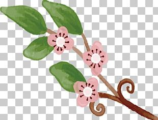 Cherry Blossom Drawing PNG