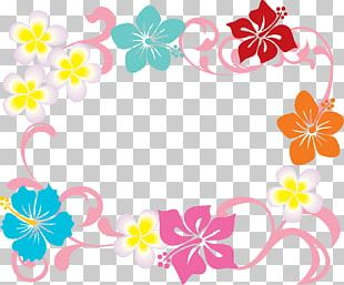 Floral Design Illustration Okinawa Prefecture Flower PNG