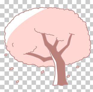 Nose Human Behavior Homo Sapiens Cartoon PNG