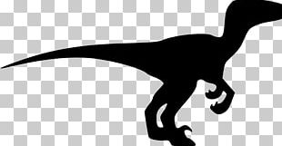 Velociraptor Drawing Dinosaur Silhouette PNG