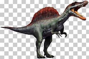 Carnivores 2 Spinosaurus Tyrannosaurus Dilophosaurus Yangchuanosaurus PNG