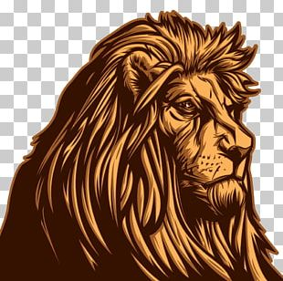 Coffee Lionhead Rabbit PNG