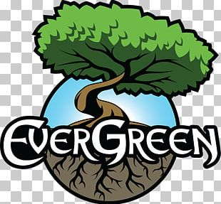 Evergreen Marine Corp. Logo Graphic Design Game PNG