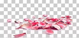 Rose Petal Nail Exfoliation Flower PNG