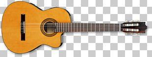 Classical Guitar Steel-string Acoustic Guitar String Instruments Acoustic-electric Guitar PNG