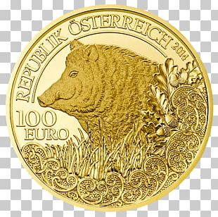 Gold Coin Gold Coin Wild Boar Perth Mint PNG