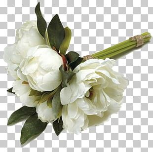 Greeting & Note Cards Condolences Sympathy Child Death PNG