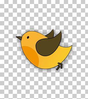 Yellow Bird Beak Green Blue PNG